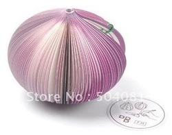 new arrival Free shipping,20pcs/lot,vegetable /Onion shape note pad/memo pad/note paper/sticky notes/stick note notebook scrat(China (Mainland))