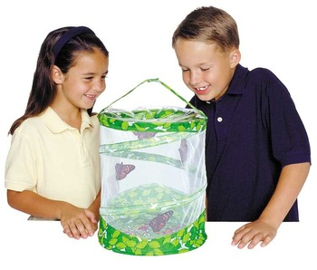 Wholesale - Insect Lore Live Butterfly Garden - Insects observed net bags
