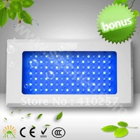 Free Shipping 120W Tri Band White Blue Led aquarium Tank Light,royal bule 450nm,460nmDropshipping