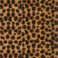 Water Transfer Printing Hydro Graphics Film--Spotted leopard pattern Width 100cm GW12745