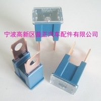 10PCS--100 AMP AUTOMOTIVE FUSES