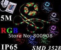 5M 3528 RGB 300 LED SMD LED Flexible Strip + 24 Key IR Remote 60 Led/Meter