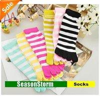 [EMS Free Shipping] Wholesale Fashion Colorful Stripe Cotton Five Toes Socks For Women (SM-07E)