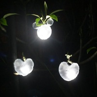 Free shipping new design 5pcs/lot portable creative led solar energy camping light/ emergency led light, heart & Mickey shape