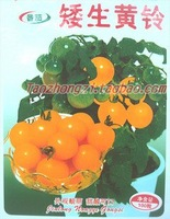 20pcs/bag Dwarf orange round little tomato vegetable Seeds DIY Home Garden