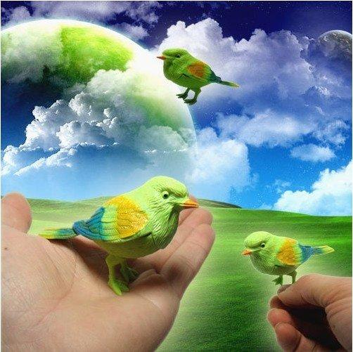 Neuheiteinzelteil kinder geschenk, schöne Sprachsteuerung vogel, fantastische Gesang gesang vogel werbe spielzeug kostenloserversand 20pcs/lot