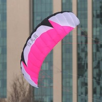 high quality 2.8m Four line Line Stunt  Power soft kite quad line stunt kite surfing quad line kite so exciting free shipping