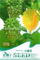 5 Pack  30 Seed sweet  grape fruit seed Lai Vegetable B022