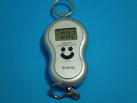 40Kg x 10g Digital PORTABLE ELECTRONIC Scale Diet SUITABLE TO CARRY IT