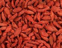 250g Finest Sun Dried Goji Berries, wolfberry ,280 grade, i.e. 280 berries per 50 grams.