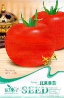 5 Pack 100 Seed   Organic Healthy Vegetable Lovely Sweet Delicious Red Tomato B042