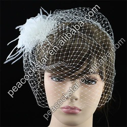 Bridal Wedding Party Quality Birdcage Netting Veil with White Feathers Fascinator Flower CT1659(Hong Kong)