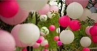 40cm 10rose 10pink 10white Paper Lantern for Weddig Party Birthday Chirstmas Halloween Decoration