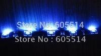 [Seven Neon]Free DHL shipping 5M/Reel SMD 12V DC 335 side emmiting lighting waterproof LED Flexible Strip Light