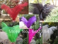 Free shipping 200pcs/ lot min 50pcs per color 10-12inch 25-30cm colorful ostrich feather