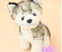 New fashion stuffed doll AURORA PLUSH soft  husky dog toy 18cm size 10pcs/lot  free shipping n0908