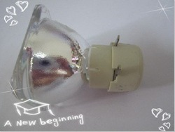 PJ1065-2 Projector Lamp without the module(China (Mainland))