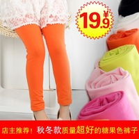 Autumn child trousers female child trousers candy color child legging female child legging thick