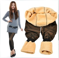 Free shipping 2013 new arrival women leggings ninth pointed bamboo Double Thermal winter warm leggings competitive price