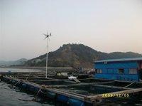 Free shipping!12v 300w windmill turbine/ 6 blades small windmill generator +12v 600w wind solar hybrid controller
