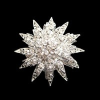 hot sell sparkly alloy rhinestone brooch free shipping 100pieces/lot WBR-606
