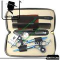 Hair scissors 6 0 INCH Cutting Thinning shear suit Blue sakura pattern SMITH CHU JP440 NEW