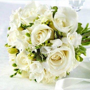 30pcs/bag white rose seeds for DIY home garden