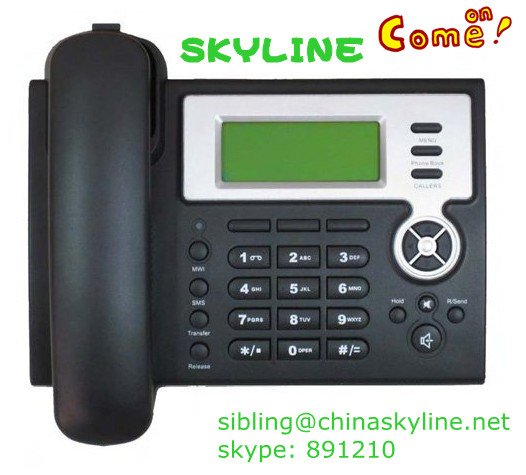 Cheapest IP Phone with FreeTechnical Support(China (Mainland))