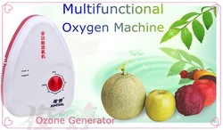 NEW Food Ozone Generator Water Air Sterilizer Ozonizer(China (Mainland))