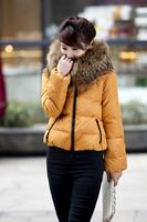 Женские пуховики, Куртки Luxury large fur collar slim medium-long down coat Women down coat
