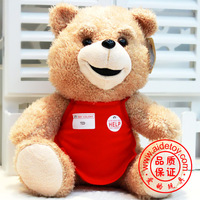 Plush toy teddy ted day gift
