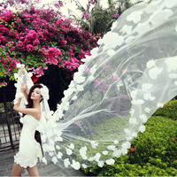 Beautiful bride 3 meters long veil style big flower veil large veil