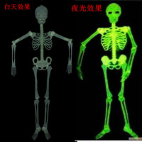 FREE SHIPPING Tricky toy halloween haunted house bar decoration - - luminous skull skeleton AROUND 0.9M