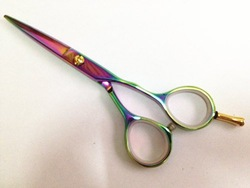 Japanese SUS440C stainless steel 5.5inch beauty salon equipments hair shear Household hair scissors(China (Mainland))
