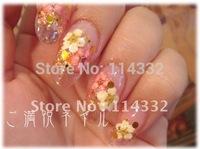 12 Colors *5 Real Dry Dried Flowers 3d Nail art Decoration Acrylic Nail  crystal nail tips  Crystal fingernail nail art sticker