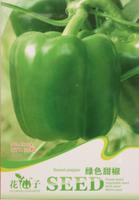 10 ORIGINAL PACKS 80 SEEDS CHINA WONDER GREEN SWEET SEEDS * E-Z TO GROW * GREEN FOOD * SWEET BELL PEPPER * FREE SHIPPING