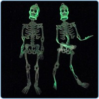 Christmas /Halloween/bar/party supplies / scary toys /24cm Skull Skeleton free shipping