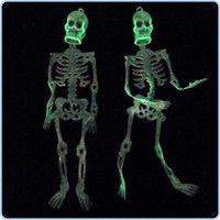 Free shipping--Christmas,Halloween supplies bar supplies / scary toys / 150cm Skull Skeleton