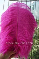Free Shipping 100pcs/lot 14-15 inches Dyed Hot Pink Ostrich Feather Plume for wedding centerpiece