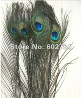 Wholesale 200pcs/lot 25-30cm 10-12inch peacock feather peacock plume peacock plumage for party performance Free Shipping