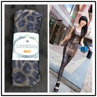 Free shipping,snidel thin tight gold leopard print legging ankle length trousers