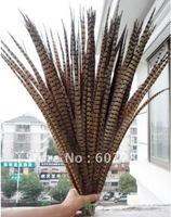 Free Shipping 100pcs 50-55cm 20-22 inches natural pheasant feather tail Ringneck pheasant feather tail