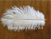 Wholesale ostrich feather 100pcs/lot  6-8 inches 15-20cm white ostrich plumes ostich plumage Free Shipping