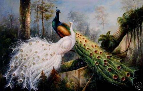 """24x36 Handmade bonito """" grande pintura a óleo da parede na arte da lona: PAVÃO"""
