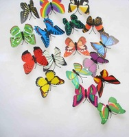 NEW 36PC MIXED 7CM FRIDGE MAGNET/WEDDING/PARTY DECORATION 3D INSECTS BUTTERFLY wholesale /retail FREE SHIPPING