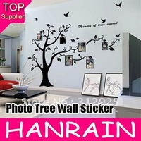 Retail Free shipping Black photo tree wall sticker decal for home Decoration 1pcs/lot