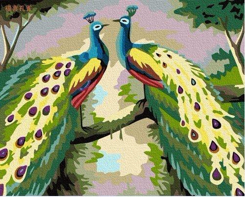 Dois pintura quadro da pintura a óleo DIY dos pavões por Número 50x40cm (20x16 '') PBN HL7013