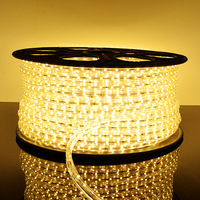 Led strip 3528 smd led with smd bright led with led strip light