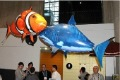 Hot selling remote control air flying shark + fish inflatable toy ,  funny RC model swimming in the air , gift + free shipping