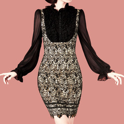 Autumn new arrival OL outfit slim elegant vintage lace lantern sleeve one-piece dress custom made(China (Mainland))